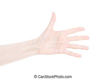 mão feminina, isolado, branco, fundo