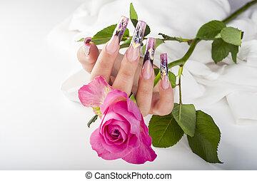 mão humana, com, a, bonito, unha