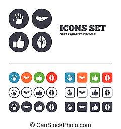 mão, icons., semelhante, polegar cima, e, seguro, symbols.