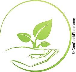 mão, logotipo, conceito, segurando, planta