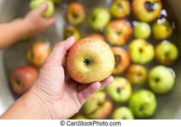 mão, maçã, homem