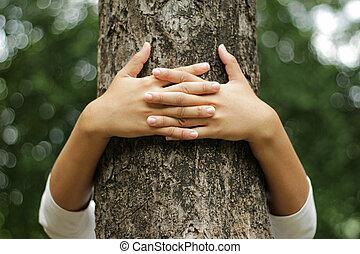 mãos, abraçando, um, tronco, de, um, árvore, em, verão, parque