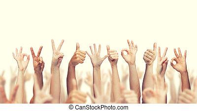 mãos cima, ok, mostrando, paz, polegares, human, sinais