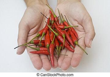 mãos, com, pimentas