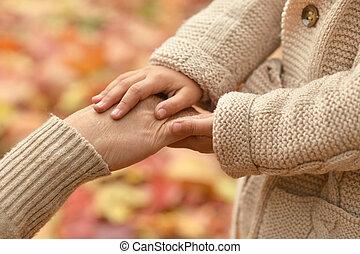 mãos, contra, folhas