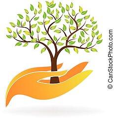 mãos, cuidado, vida, árvore, planta, logotipo