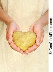 mãos, de, mulher jovem, segurando, batata, em, forma coração