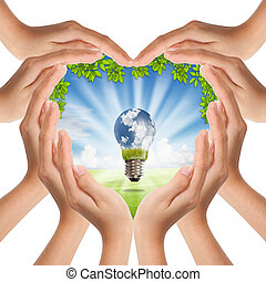 mãos, fazer, forma coração, cobertura, natureza, e, bulbo leve