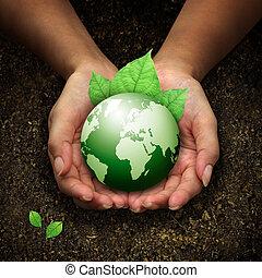 mãos humanas, segurando, terra verde