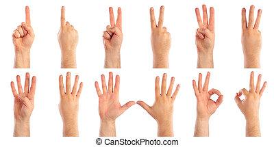 mãos masculinas, contagem
