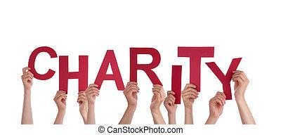 mãos, segurando, caridade