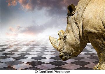 mächtig, rhino.gamero, schach, stücke, marmor fußboden