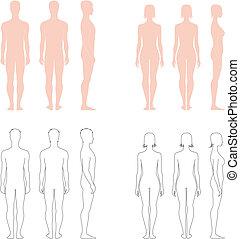 människa räkna