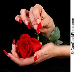 mänsklig, fingrar, med, länge, fingernagel