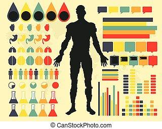 mänsklig, illustration, vektor