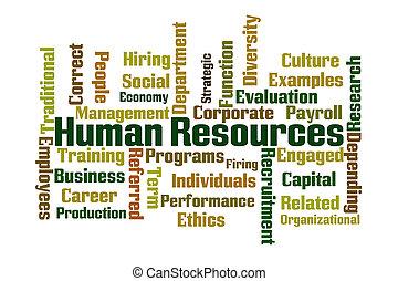 mänskliga resurser