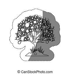 märke, silhuett, lövad träd, med, ramifications