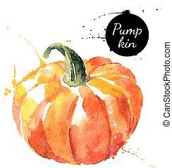 målning, vattenfärg, pumpkin., bakgrund., hand, oavgjord, vit