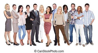 mångfaldig, grupp, folk