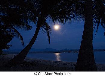 månsken, vatten
