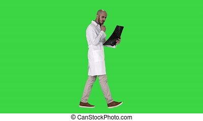 médecin, marche, mâle, balayage, chroma, jeune, écran,...