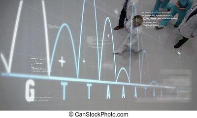 médecins, hospital., irrégulier, foregroung, en mouvement, vestibule, courbes, marche, abscissa, graphique