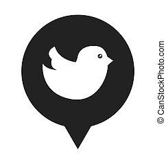média, bulle discours, oiseau, social