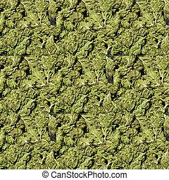 médico, fundo, marijuana