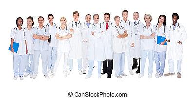 médico, grupo, doctors