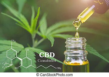 médico, health., elementos, cannabinoids, cannabis, óleo, ...