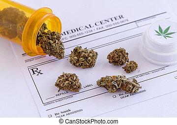 médico, marijuana, brotes, y, semillas