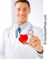 médico masculino, con, corazón, y, cardiograma