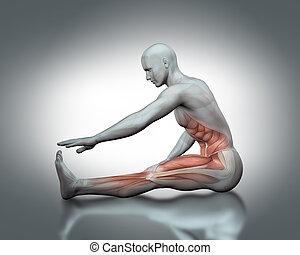 médico, postura, 3d, figura, extensión