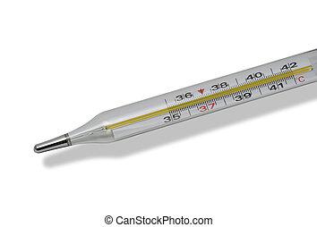 médico, termômetro