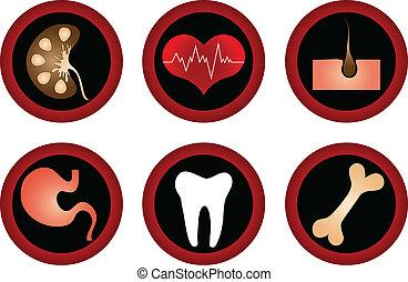 médico, vetorial, jogo, icons.