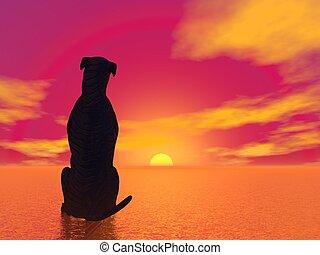 méditation, dog-, render, 3d