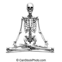 méditation, squelette