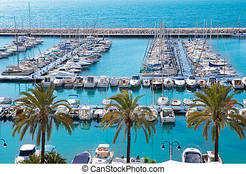 méditerranéen, moraira, élevé, alicante, nautic, marina, port