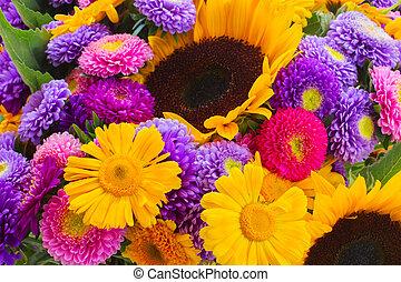 mélangé, automne, fleurs, posy