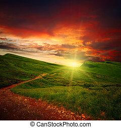 méltóságteljes, út, napnyugta, kaszáló, át