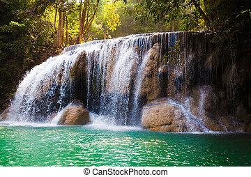 mély, erdő, waterfall.