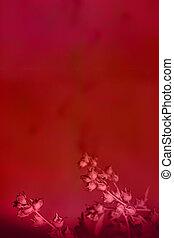 mély, menstruáció, háttér, piros, gyönyörű