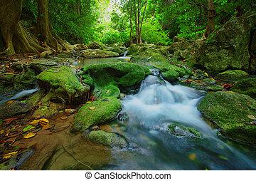 mély, zöld erdő, háttér, vízesés