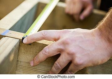 mérés, carpenter's, erdő, szalag, kéz