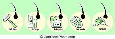 métodos, remoção, cabelo, infographic, crescimento, tempo
