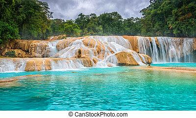 méxico, azul., de, cascadas, agua, azul, waterfalls., ...