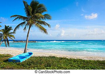 méxico, chen, cozumel, río, isla, playa