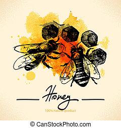 méz, skicc, ábra, kéz, vízfestmény, háttér, húzott