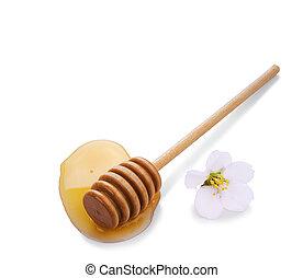 méz, tócsa