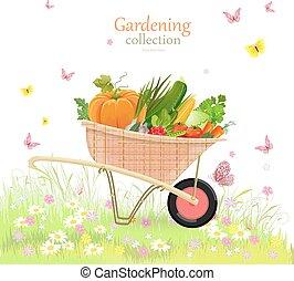 mí, jardín, vegetales, rústico, hierbas, carretilla, encantador